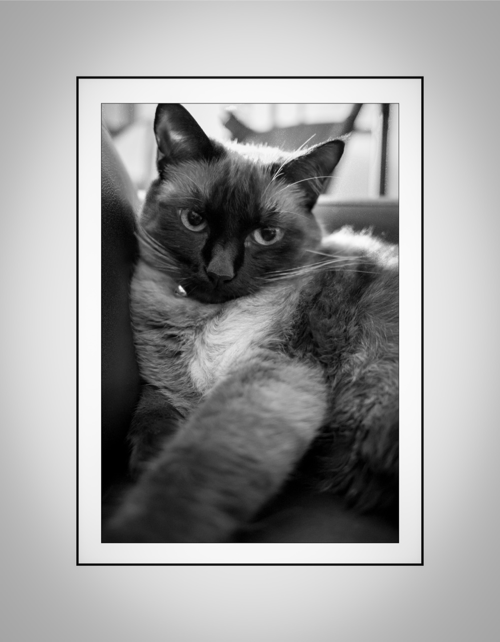 Minka pooh july 2013 framed 2-