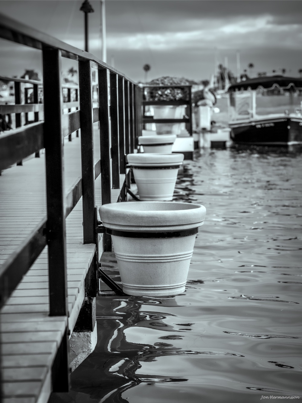 flowerpots bw-wm- (copy)